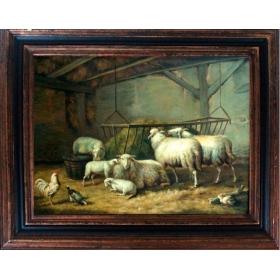 Corral de ovejas y otros animales como gallina